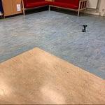 kontor-golv-färg-form